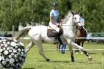 Jeździectwo